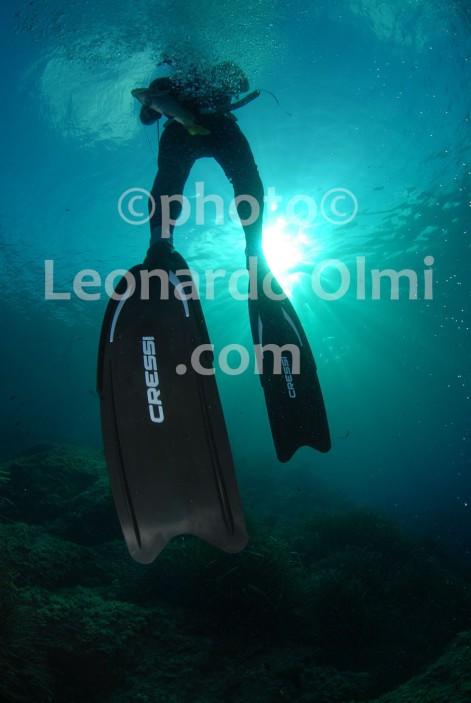 France, Corsica Island, free diver DSC_0434 Bellani copy