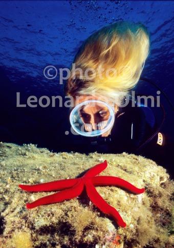 Italy, Giglio island, starfish, diver (30-14) JPG2 copy