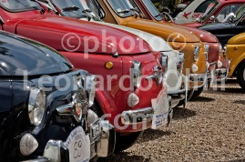 Antique cars, Fiat 500, Florence, Italy DSC_0424 JPG copy
