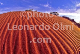 Australia, Western Australia, Exmouth, desert, red dunes (42-8) JPG copy