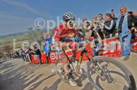 Cycling, Italy, Monteriggioni, Mountainbike 2017 DSC_4326 bis copy