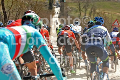 Cycling, Italy, Strade Bianche Pro race 2015 DSC_6612 bis JPG copy