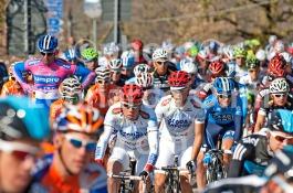Cycling, Italy, Tuscany, Tirreno Adriatico Pro race 2012 DSC_4164 JPG copy