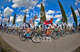 Cycling, Italy, Tuscany, Val d'Orcia, Tirreno Adriatico Pro race 2018 DSC_5541 JPG copy