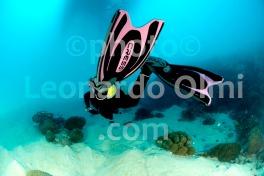 Diving, Seychelles, Mahè, diver DSC_7494 JPG copy
