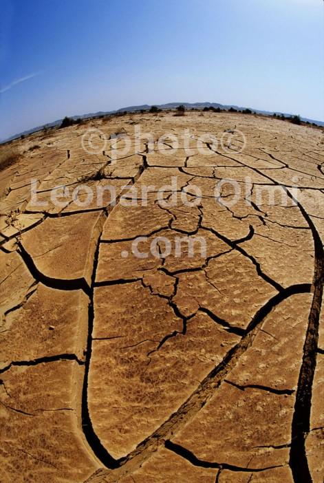 Egypt, Red Sea, Marsa Alam, desert (16-7) JPG copy