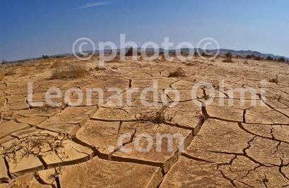 Egypt, Marsa Alam, desert