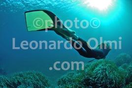 Freediving, France, Corsica Island DSC_1530 bis JPG copy