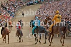 Italy, Siena, Palio, Piazza del Campo, horses DSC_7440 JPG copy