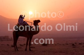 Beduin on Camel at Sunrise, Wadi Rum Desert, Jordan