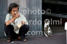 Thailand, Bangkok, China Town, man and cat DSC_0016 TIF copia copy