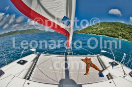 British Virgin Islands_sailboat_sailing_DSC_5178 JPG copy