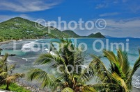 British Virgin Islands_Tortola_Long Bay_beach_palm trees_DSC_1020 bis JPG copy